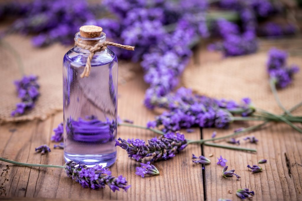 lavender essential oil benefits - Prasadhak